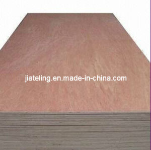 Bintangor Face Plywood with Good Quality and Price pictures & photos