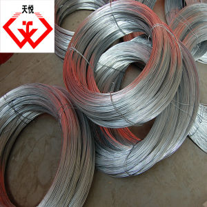 Cheap and Fine! Bright Electric Galvanized Redrawn Iron Wire (TYC-966) pictures & photos
