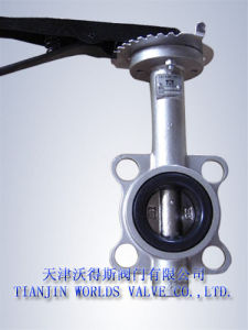 Super Duplex Stainless Steel Butterfly Valve (D71X-10/16) pictures & photos