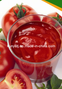 Tomato Sauce pictures & photos