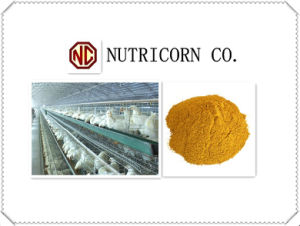60% Corn Gluten Meal with Lowest Price pictures & photos