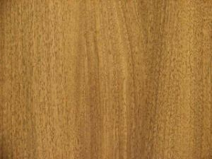 Laminated Flooring-Black Walnut (8656)