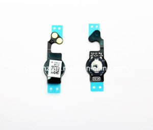Cellular Phone Accessories for iPhone 5g Keys Flex Cable pictures & photos