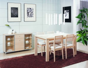 Dining Room Furniture (S8T05)