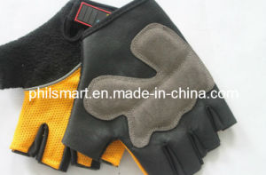 Good Quality Sport Fitness Wokout Gym Fitness Weight Lifting Gloves for Weight Lifting (PHH-990116) pictures & photos