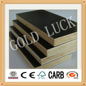 Qingdao Gold Luck High Quality Film Faced Plywood Used Formwork pictures & photos