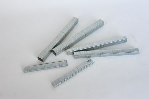 Industrial Wire Staple (13 Staple) pictures & photos