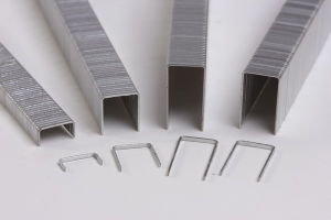 Industrial Wire Staple (10J) pictures & photos
