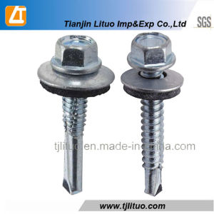 Self Drilling Screws with EPDM Bonded Washer pictures & photos