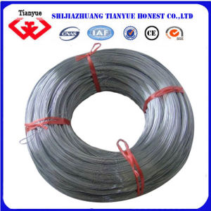 HDG Iron Wire (TYB-0010) pictures & photos
