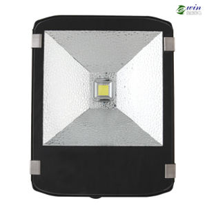 80W LED Outdoor Floodlight for Stadium Lighting (EW-FL-80W) pictures & photos