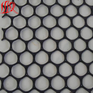 HDPE Drainage Geonet Plastic Net pictures & photos