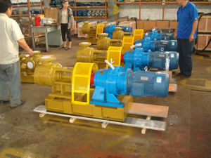 Nyp160 Stainless Steel Syrup Pump pictures & photos