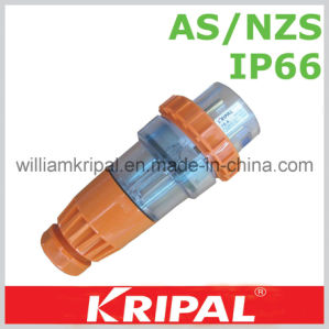 Australian Industrial Straight Plug pictures & photos