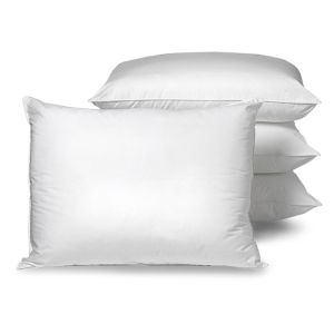 Standard European King Sizes Pillow