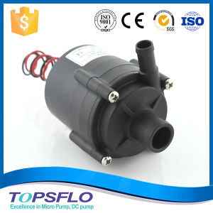 Wholesale Circulating Pump pictures & photos