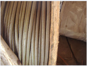 Good Quality Steel Cable 19X7 with Different Sizes Made in China pictures & photos