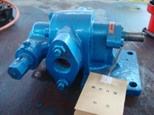 KCB83.3 Gasoline Explosion Proof Gear Oil Pump pictures & photos