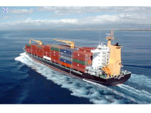 Lowest Consolidate Sea Freight to Egypt pictures & photos