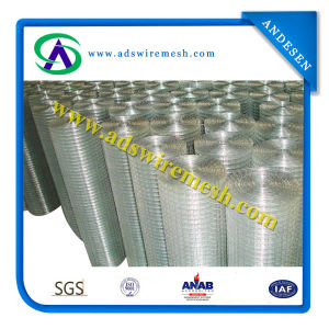 Welded Wire Mesh Fence (constuction material) pictures & photos