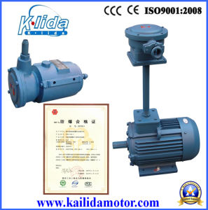 Ybf2 Explosion-Proof Induction Fan Motor pictures & photos