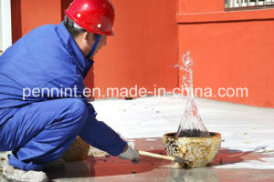 High Quality Non-Exposed Polyurethane Roof Waterproof Coating pictures & photos