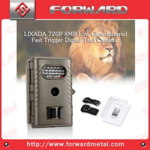 Hunting Camera Trail Camera Game Camera Waterproof Camera Mini Camera Digital Camera pictures & photos