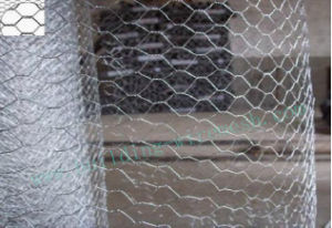 Electric Wire Mesh Type Galvanised Material Hexagonal Wire Netting pictures & photos