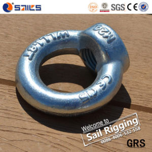 Galvanized Drop Forged Eye Nut DIN582 pictures & photos
