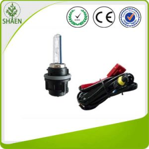 Factory Wholesale HID Xenon Bulb Hs5 with High Quality pictures & photos