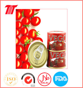 Canned Tomato Ketchup Paste Safa pictures & photos