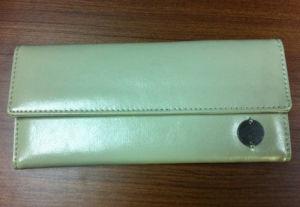 PU Vinyl Purse /Clutch Bag (4UWT018)