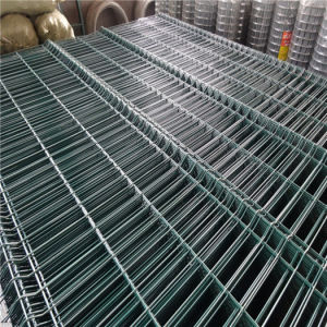 Stainless Steel Welded Wire Mesh for Animal Cage pictures & photos