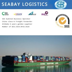 Shipping Container/ Freight Cost/Shipping Company/Shipping Agent From China pictures & photos