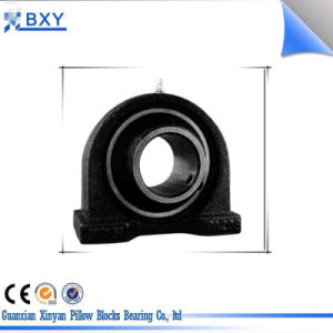Stainless Steel Linear Pillow Block Bearing Ucpa pictures & photos