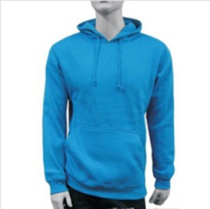 Custom Cotton/Polyester Plain Hoodies Sweatshirt of Brush Fleece (F032) pictures & photos