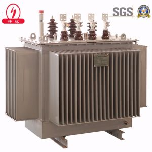 Oil-Immersed Transformer pictures & photos