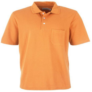 Wholesale Cheap Promotion Polo Shirt with Pocket pictures & photos
