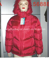 Exquisite Women Carton Coat Is Available for Winter (5688A--D)