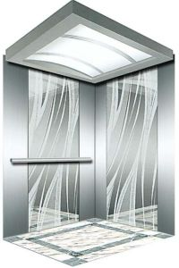 German Professional Home Villa Elevator (RLS-124) pictures & photos