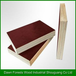 Shuttering Plywood for Construction Usage pictures & photos
