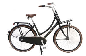Euro Bicycle with Dynamo Light, Rear & Front Carrier Lady Bike (HC-CT-2610) pictures & photos