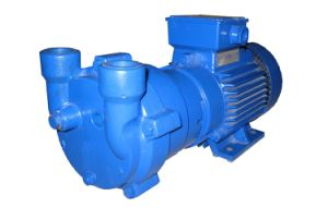 2BV2071 Water (Liquid) -Ring Vacuum Pump
