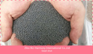 Factory Price Hot Sale Metal Abrasives Cast Steel Shot/Steel Grit pictures & photos
