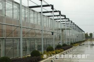 Venlo Glass Greenhouse