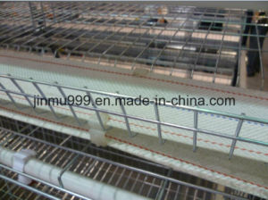 High Quality Steel Poultry House Chicken Farm Equipment pictures & photos