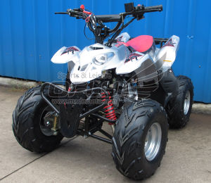 Hot Selling Mademoto Quad Bike pictures & photos