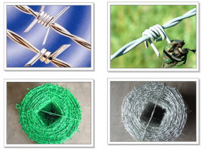 Galvanized Iron Barbed Wire in Electro and Hot-Dipped pictures & photos