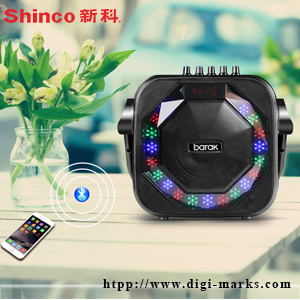 Fitness Audio Brand Wireless Bluetooth Battery Karaoke Speaker pictures & photos