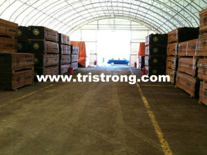 Super Large Temporary Workshop, Super Strong Trussed Frame Warehouse (TSU-49115) pictures & photos